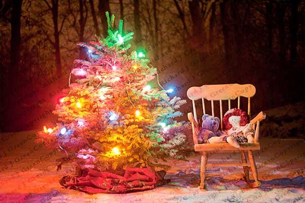 Christmas Tree, Rocking Chair, Presents, Snow, Winter