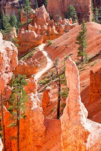Bryce-Canyon, hiking trail, hike, national park
