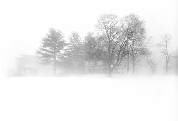 Winter, Snow, Storm, Blizzard