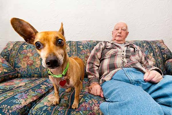 man, dog, portrait, home