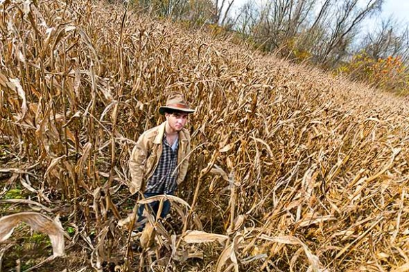 Portrait Photography Corn Field Man