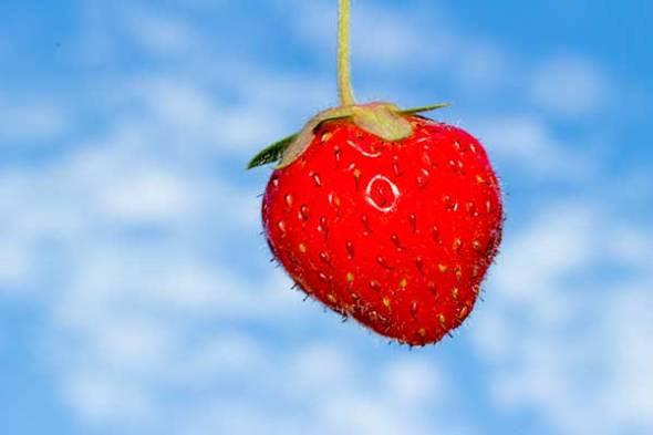 Strawberry, blue sky, clouds