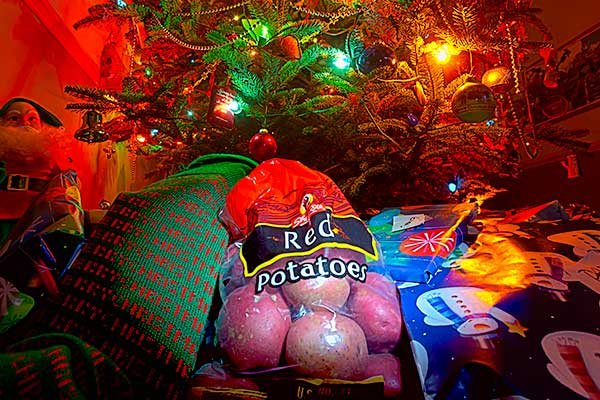 Christmas, Tree, Presents, Gifts, Santa Claus