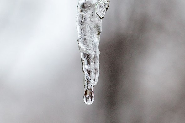 Icicle, winter, freeze, frozen, freezing