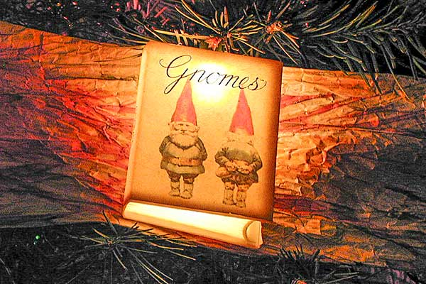 Merry Christmas, Gnomes