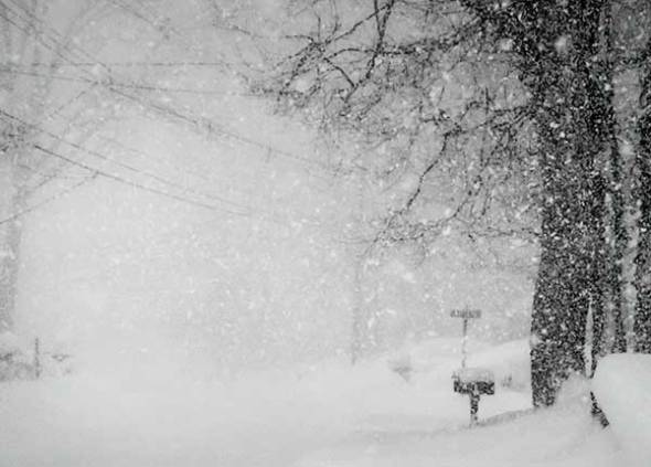 Snowstorm, Blizzard, Snow, Winter, Cold, Freeze, Freezing