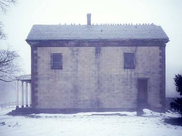 house, birds, snow, fog, winter, cold. eerie