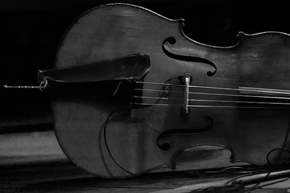 Standup Bass, Musical Instrument, Music, Musician